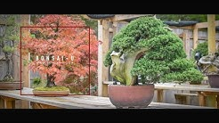 Eisei En Bonsai Youtube
