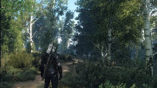 How to run The Witcher 3 if your PC does not meet the minimum system requirements(, 2015-06-10T11:47:40.000Z)