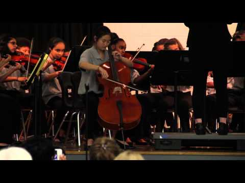 Lake Elkhorn Middle School Symphonic Orchestra - The Swan