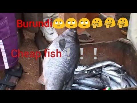 Burundi \ fresh fish market Akaguriro kisamaki mbisi