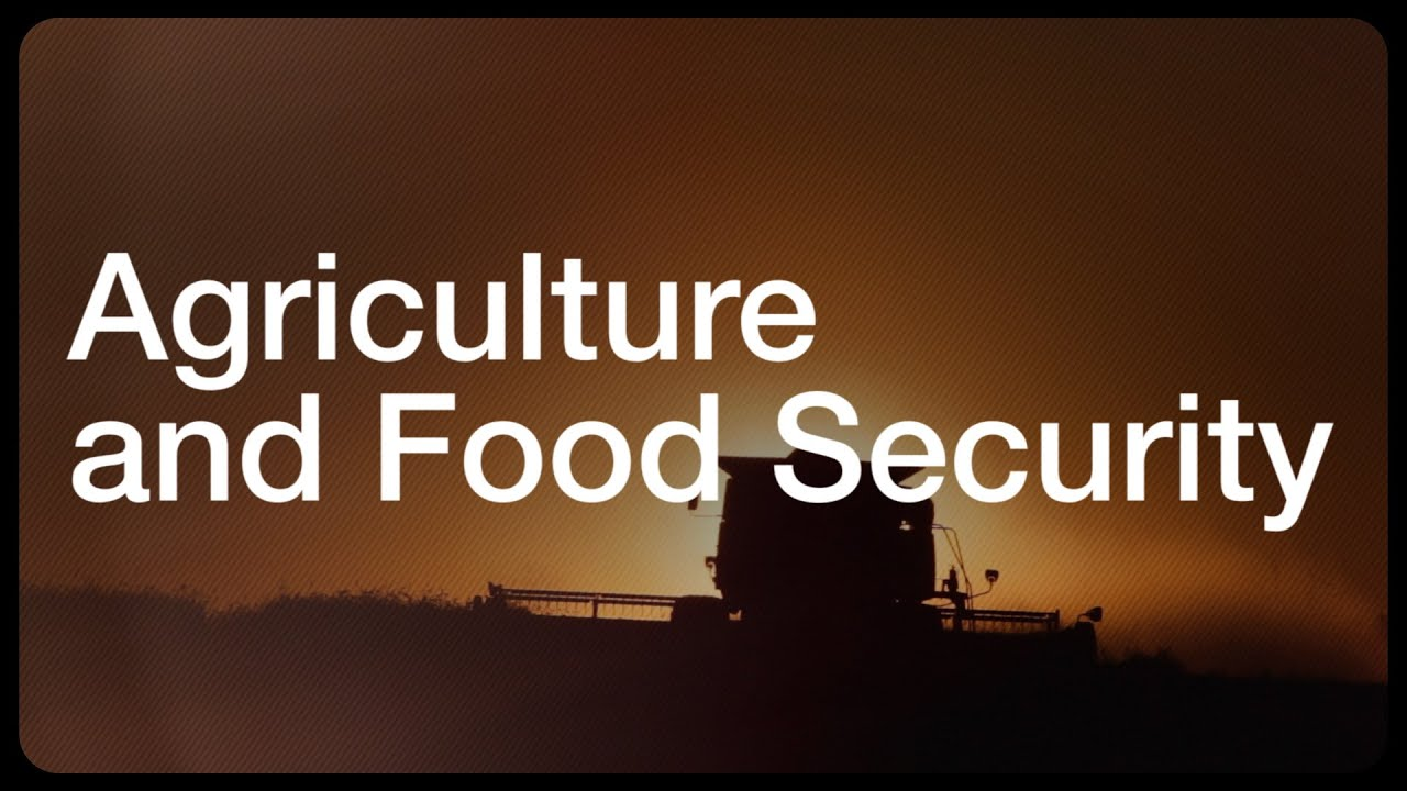 Food security and why it matters | World Economic Forum