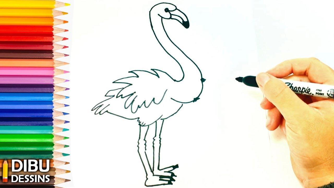 Comment Dessiner Un Flamingo étape Par étape