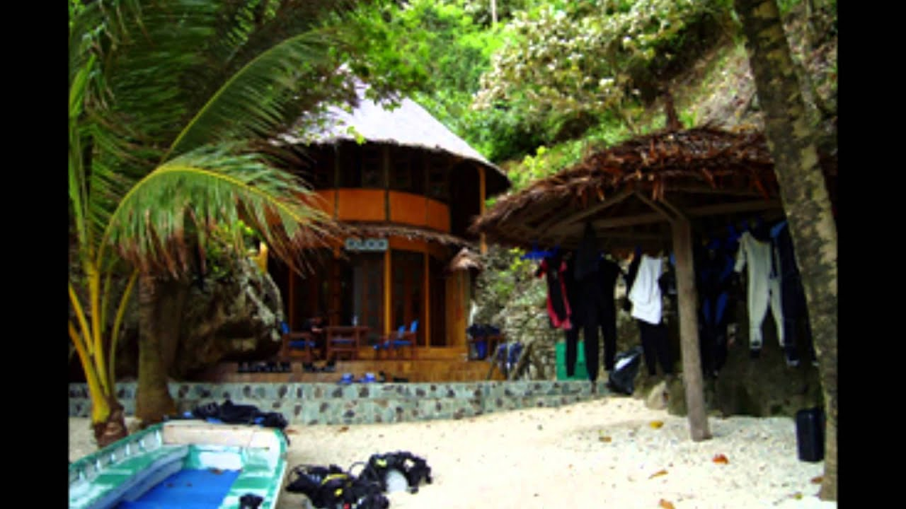 Apo Island Beach Resort S Oriental Philippines By Www Seatholidays 63 915 2755 397