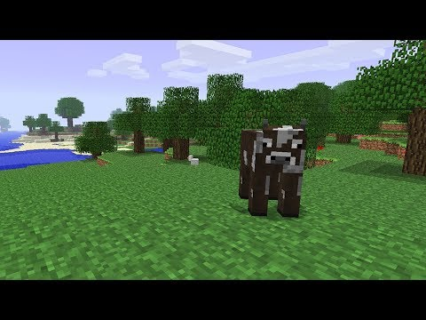 going-back-in-time-to-minecraft-beta
