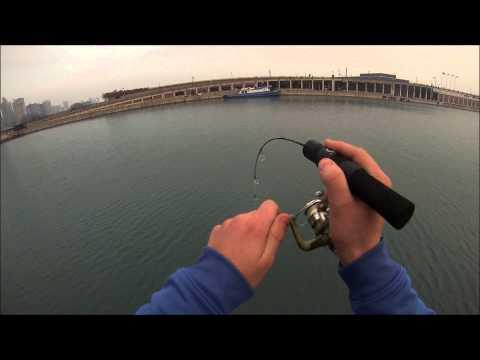 Chicago perch fishing (Navy Pier)