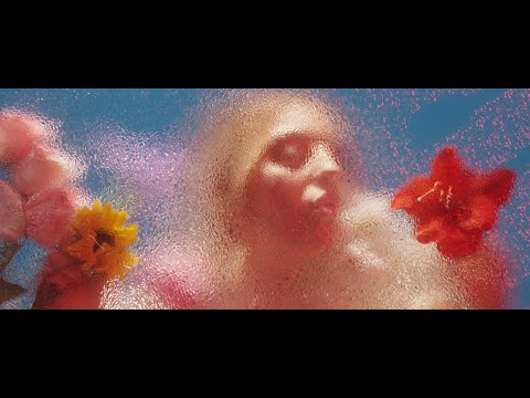 svrcina---flowers-(official-video)