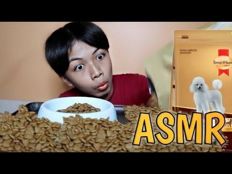ASMRอาหารหมา สมาร์ทฮาร์ทโกลด์ กร้อบกรอบ |จะกินหมดไหม |รสชาติคือแบบ