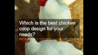 Cheap Hen House Plans | How To Know Which Hen House Plans Will Be Good Value For You And Your Hens