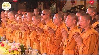 Kiếp Người Này Có Ý Nghĩa Gì? | Thầy Thích Trúc Thái Minh