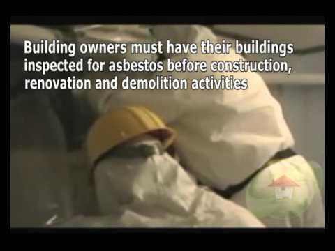 asbestos-removal-plantation