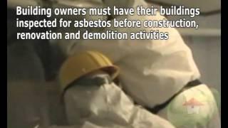 Asbestos Removal Plantation