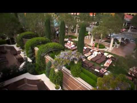 Drone Camera Demo Video