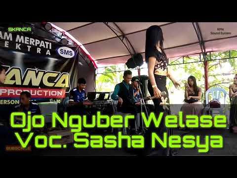 Ojo Nguber Welase.. (cover Ska Dangdut)  Voc. Sasha Nesya