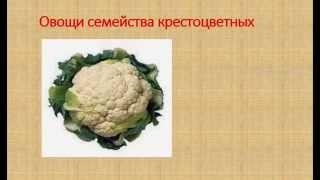 10 здоровых продуктов