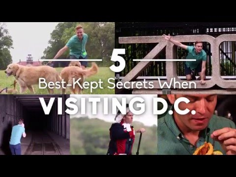 The 5 Best-Kept Secret Spots to Visit in Washington DC