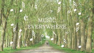 Ehrling - No Worries Ft. Timon & Pumba (No Copyright - Music Everywhere)