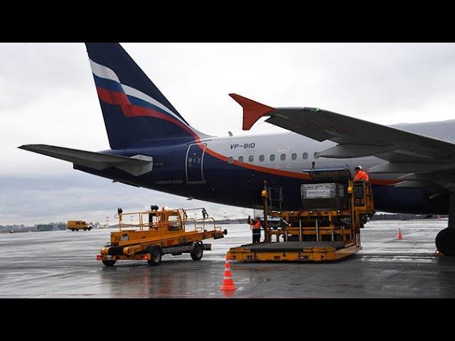 Маски, перчатки и билеты: что необходимо россиянину для путешествия за границу