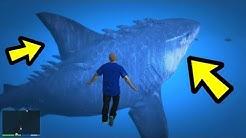 GTA 5 - The MEGALODON Shark! (Footage)
