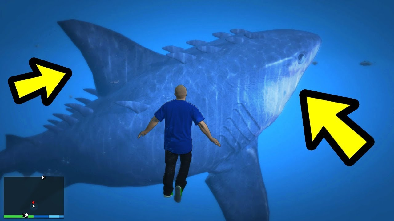 GTA 5 - The MEGALODON Shark! (Footage)