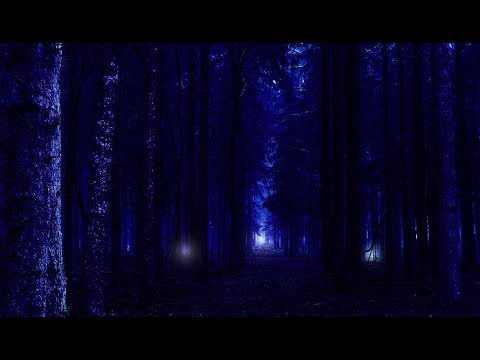 Image result for The Mysterious Aleya Ghost Lights, Bengal