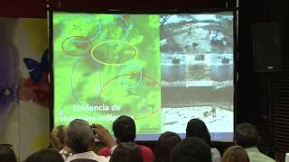 Centro León. Conferencia. Las sociedad precolombinas y el encuentro de culturas de 1492.