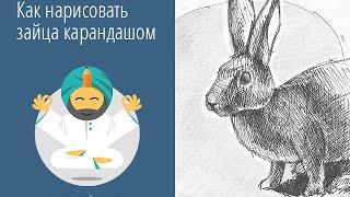 Как нарисовать зайца карандашом за 25 минут?(Видео ускорено в два раза, потому получилось за 13 минут ;) Описание, техники и инструменты, которые использов..., 2015-08-18T15:33:06.000Z)