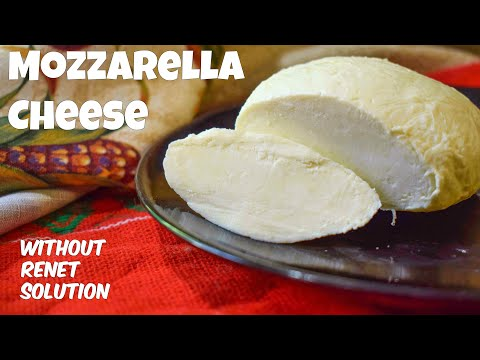 How to make Mozzarella Cheese at home | Homemade Mozzarella Cheese recipe by Cook With Us