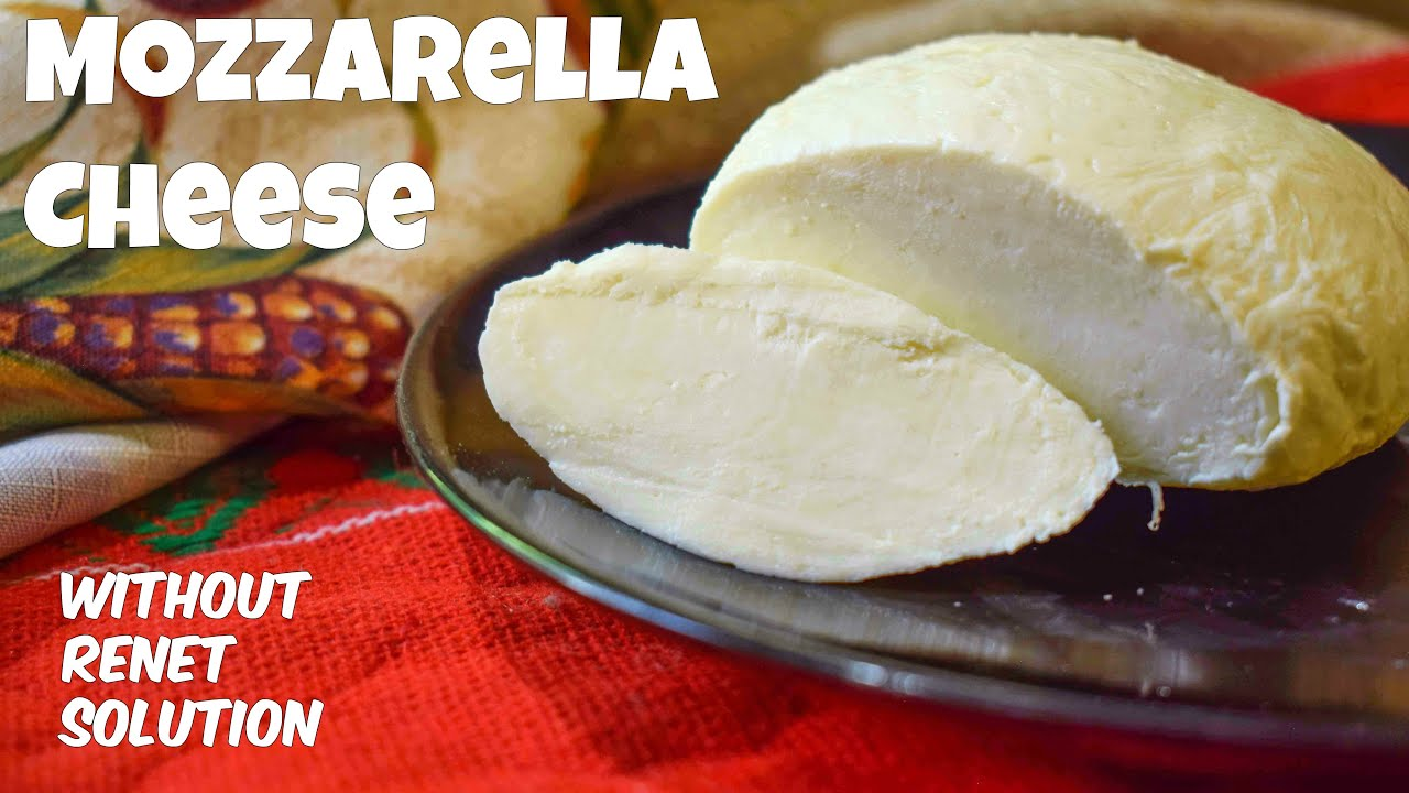 How to make Mozzarella Cheese at home  Homemade Mozzarella Cheese recipe  by Cook With Us