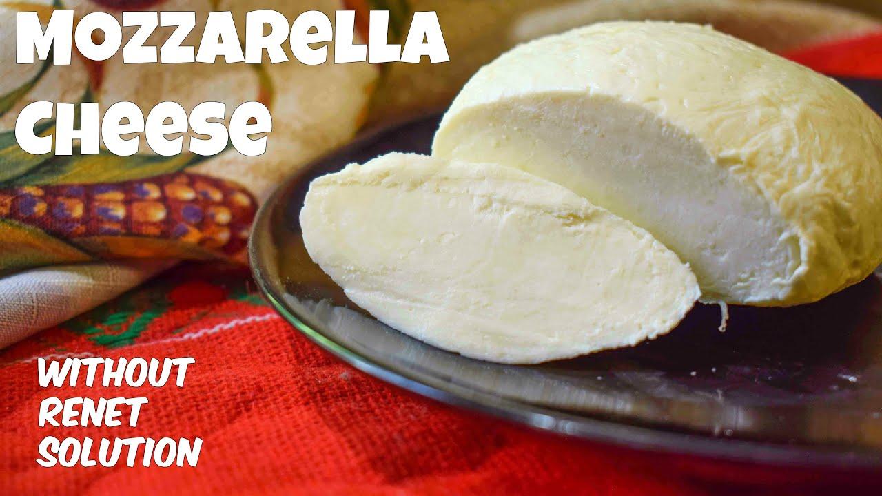How To Make Mozzarella Cheese At Home Homemade Mozzarella Cheese
