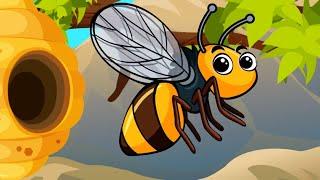 Baby Bumblebee Song