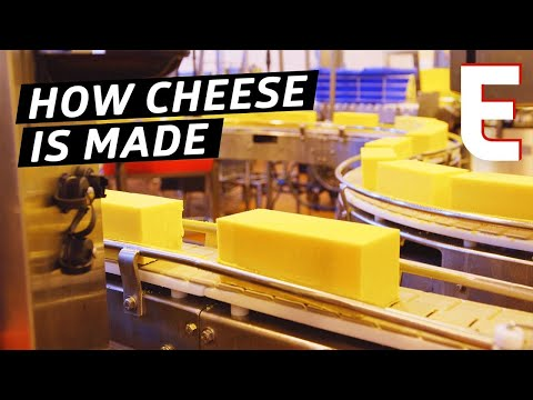 How Cheddar Cheese Is Made In a Factory — The Process thumbnail