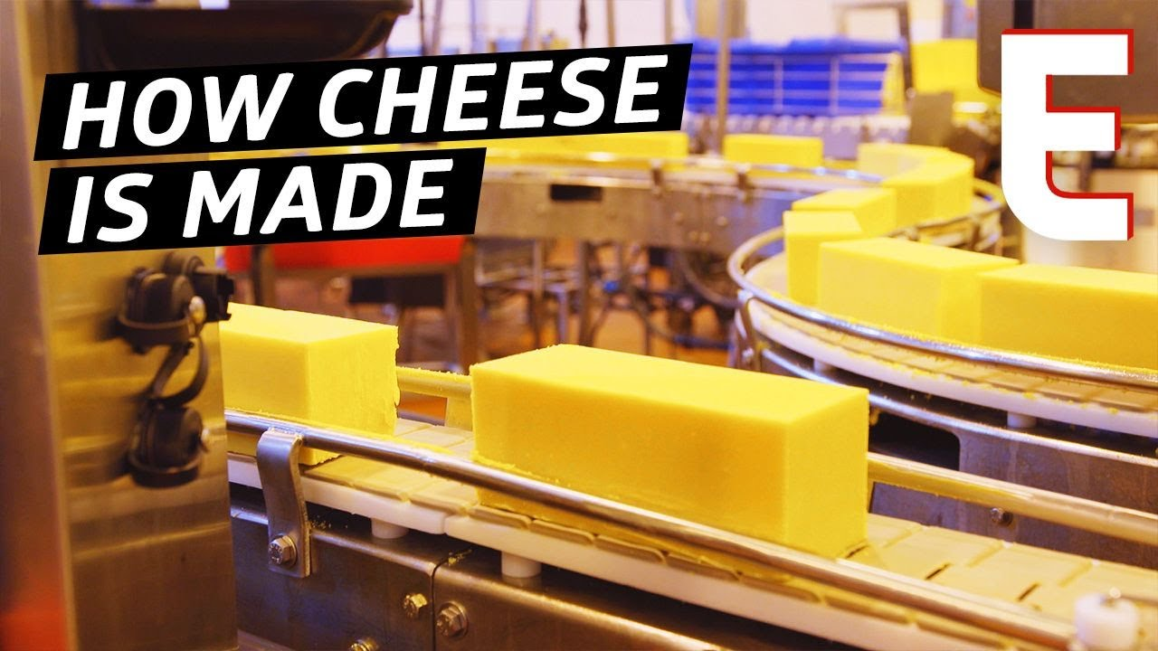 How Cheddar Cheese Is Made In a Factory — The Process
