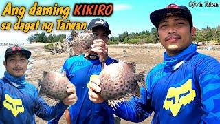 Buhay Ofw:Pangingisda sa dagat ng Taiwan/Kitang/ Spotted Scat Fish by; bulay og tv