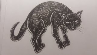 cat drawing draw scared getdrawings