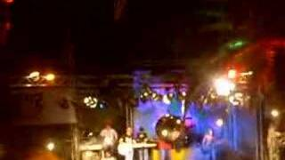 wintermoods - marigold