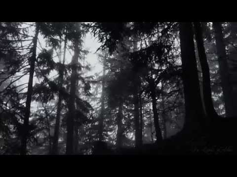 Aquilus - In Lands of Ashes (Official Music Video)
