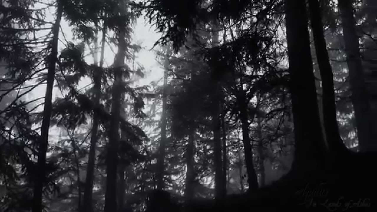 aquilus-in-lands-of-ashes-official-music-video-andrea-effulge