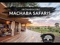 Introducing Machaba Safaris