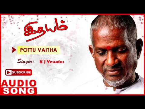 Idhayam Tamil Movie Songs | Pottu Vaitha Oru Full Song | Murali | Heera | Ilayaraja | Music Master
