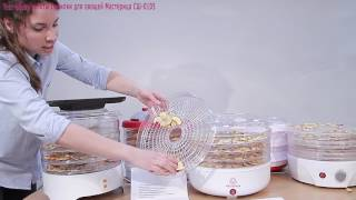 Сушарка для овочів і фруктів Майстриня СШ-0105