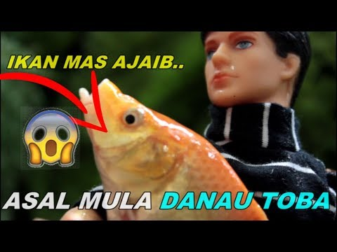 Unduh 54 Gambar Ikan Mas Ajaib HD Terbaik