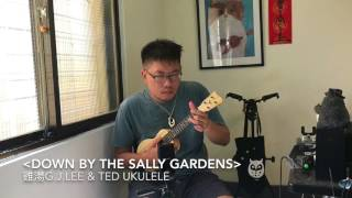 〈Down By The Sally Gardens〉Solo by G.J.Lee with Ted HandCraft Ukulele