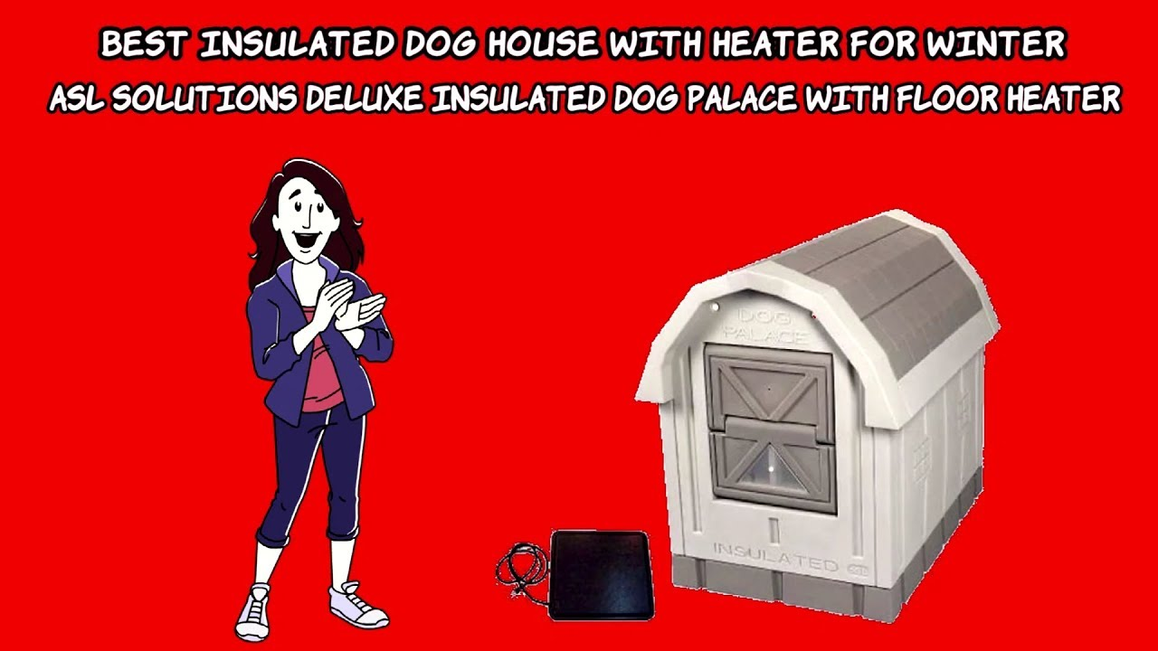 Best Insulated Dog House With Heater For Winter Asl Solutions