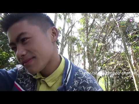 Movie hmong ntshaws yawm yij muaj nyiaj muam neej thiaj tsi kawg thumbnail