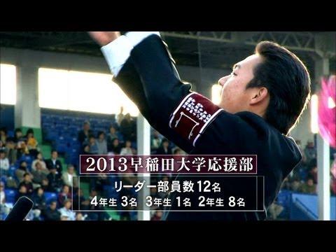 【公式】カレすぽ!早稲田大学応援部に密着!