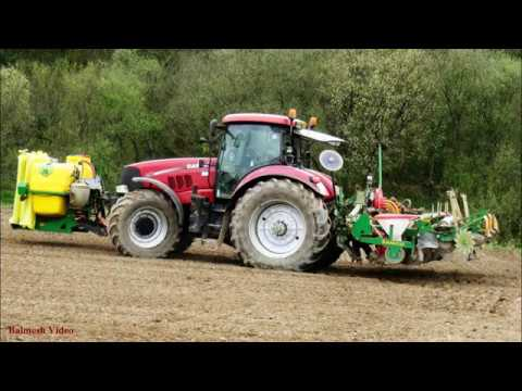 Maize-Drilling Under Plastic with Case 210.