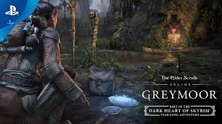 The Elder Scrolls Online: Greymoor – Adventures in Antiquities | PS4