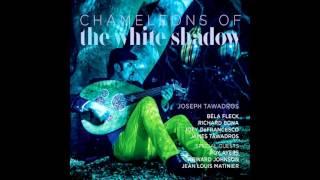 Video Joseph Tawadros - Chameleons Of The White Shadows (2013) - Full Album (HQ) download MP3, 3GP, MP4, WEBM, AVI, FLV Juli 2018