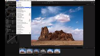 Levels and Curves in Capture One Pro 7 | Phase One