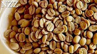 Kaffeegenuss - Dokumentation von NZZ Format 2009